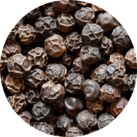 Organic Black Kampot Pepper from Starling Farm