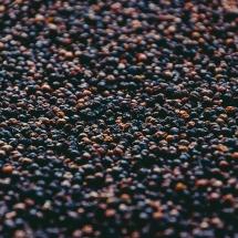 drying-pepper__starling-farm_kampot-pepper-farm-6