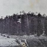 history_starling-farm_pepper-plantation-in-kampot-1930s